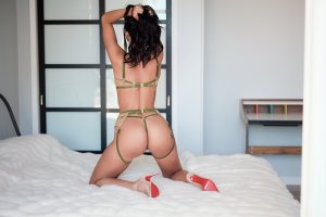 Anne-tiphaine independent escorts in Waterloo Illinois, sex parties